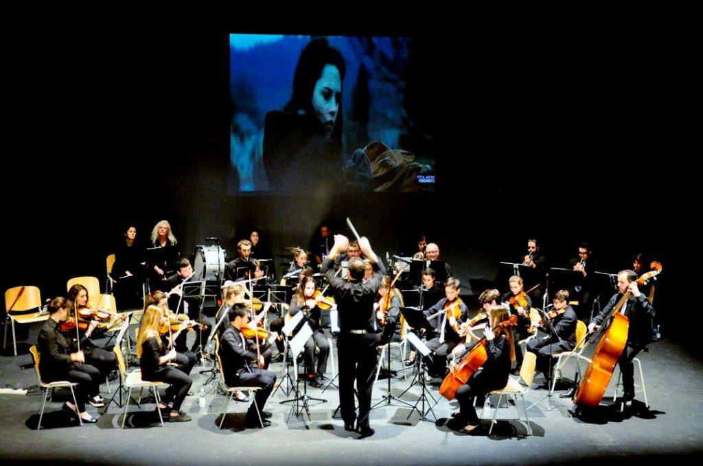concierto-vita-musica